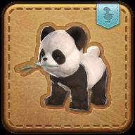 Image de présentation de la mascottes Petit Panda Pataud