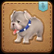Image de présentation de la mascottes Chiot bulldog