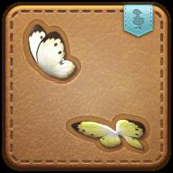 Image de présentation de la mascottes Couple de Papillons