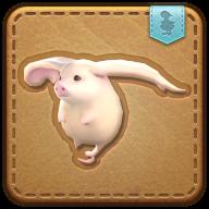 Image de présentation de la mascottes Bout-de-cochon