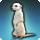 Icone de présentation de la mascotte Suricate