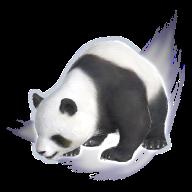 Image de présentation de la mascottes Panda Mystique
