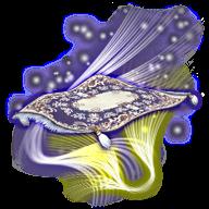 Image de présentation de la monture Tapis Magique